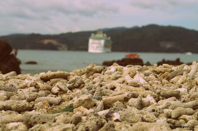 Обломки кораллов