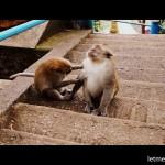 Один день в Краби, Таиланд