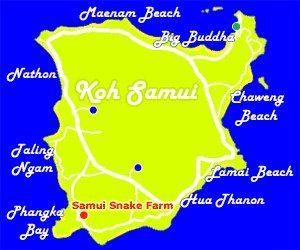 змеиная ферма на самуи на карте