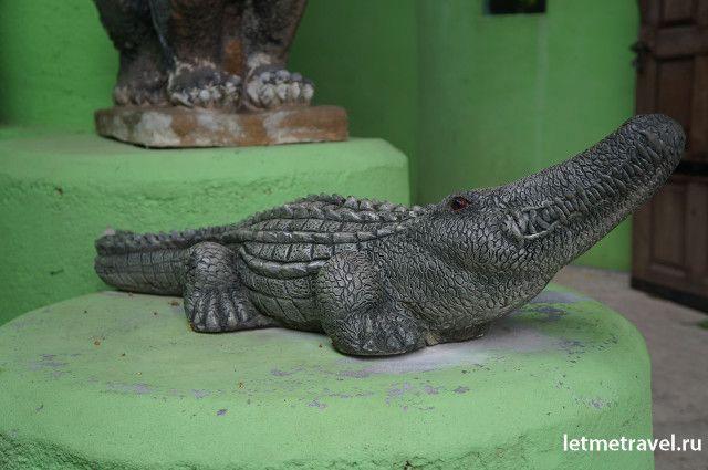 крокодиловая ферма на самуи фото