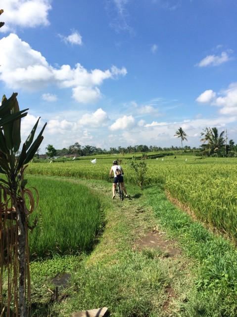 Велотрекинг на Бали